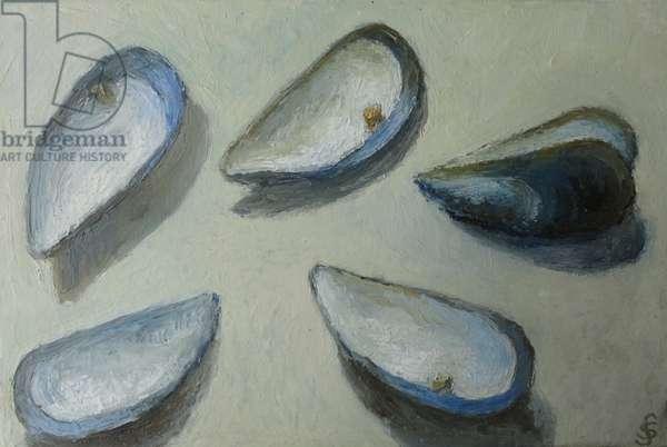 Mussel shells 2