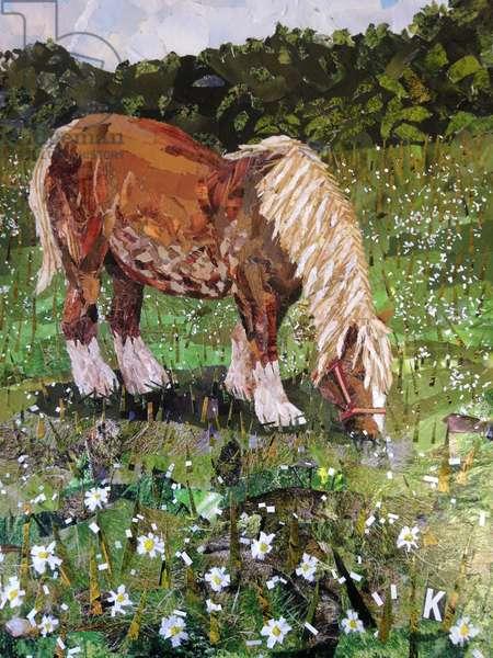 Hillside Horse