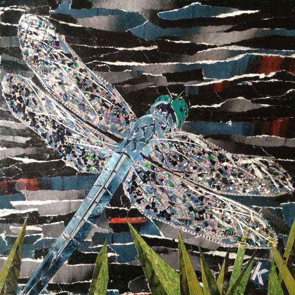 Dart - Emperor Dragonfly At Riverside