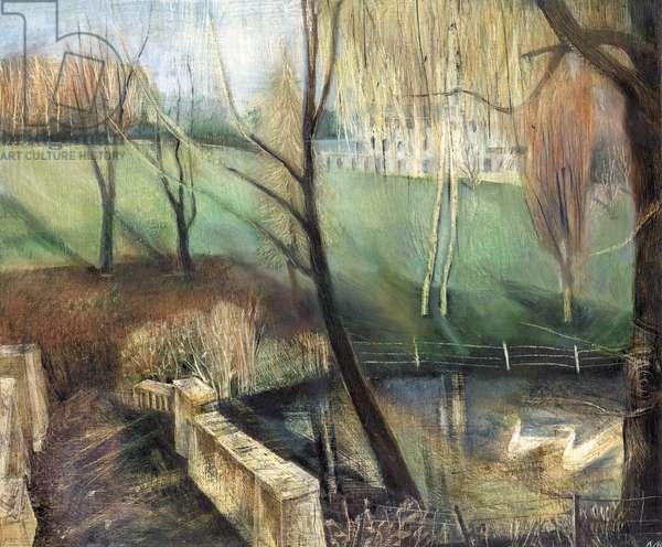 Pond, Kenwood