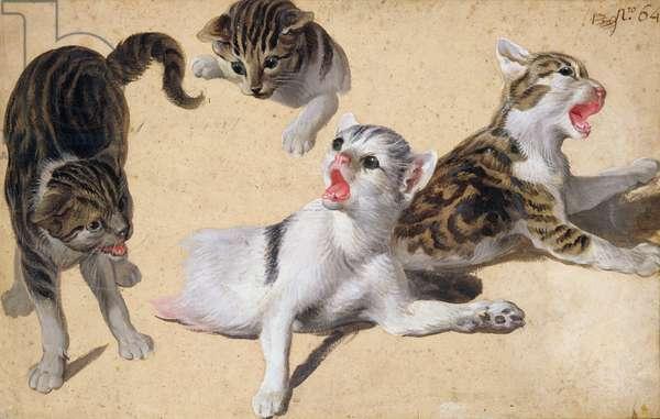 Four Studies of Kittens (oil on light brown paper)