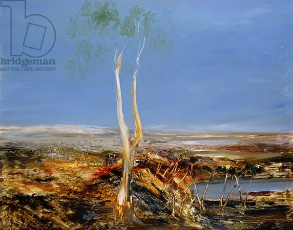 Landscape with Gumtree, 1964 (oil on board)