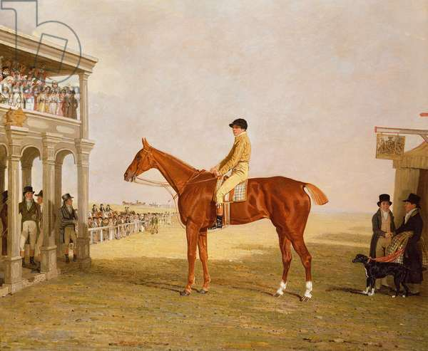 Lt. General Thomas Grovesnor's chestnut Filly 'Defiance' after she won the Northampton Gold Cup, September 15, 1813 (oil on canvas)