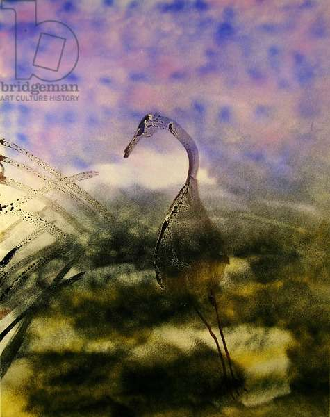 Heron, China (w/c & wax resist on paper)
