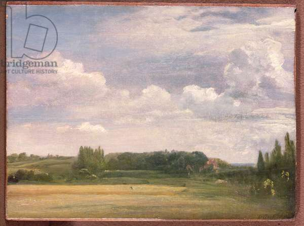 View towards the Rectory, East Bergholt, 1813 (oil on canvas)