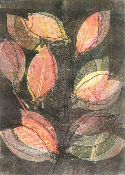 Midnight Garden V, 2015, (monoprint on paper)