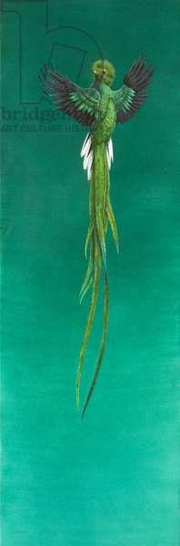 Quetzal ( watercolour & gouache on paper )