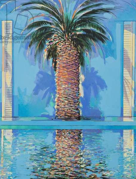 the Deia Palm