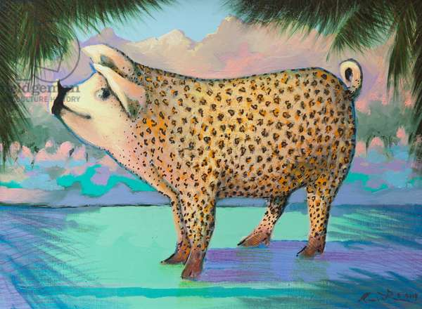 The ever elusive leopard skin Corsican pig .