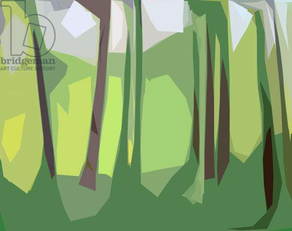 Trees,2016,(c-print)