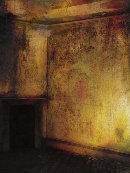 'Beauty is a witch' series Elvaston Castle..golden room with fireplace