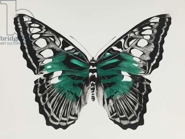 Butterfly green, 2015, (silkscreen print)