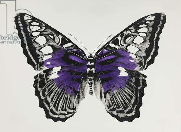 Butterfly purple, 2015, (silkscreen print)