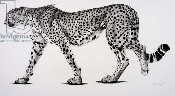 Namib, 2004, (Charcoal on paper)
