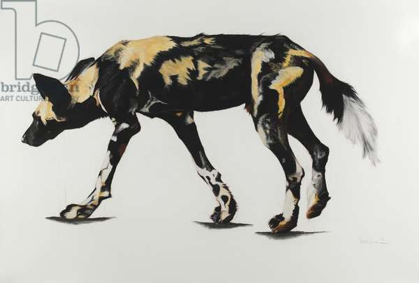 Large African Wild Dog III, 2015, (Charcoal and pastel on paper)