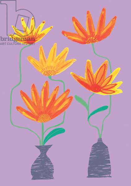 Calendula, watercolour, crayons & digital, 2018