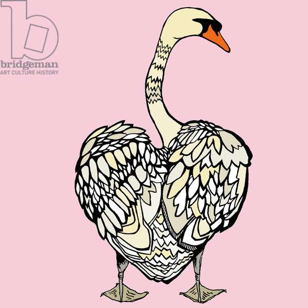 Mildred Mute Swan, 2014, pen and ink, digitally coloured