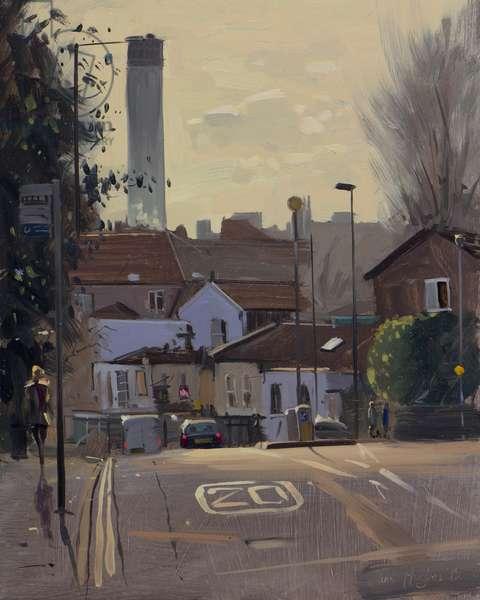 Cotham Brow, contre jour, January