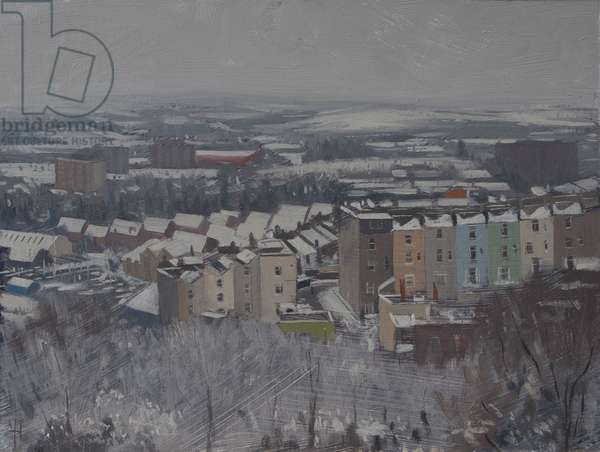 Looking southwest from brandon hill, january