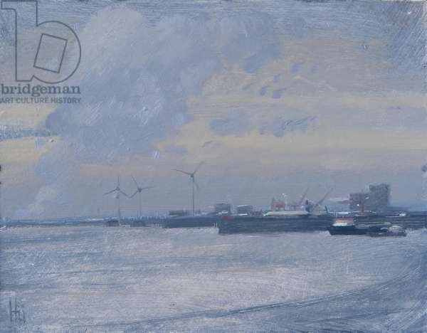 Avonmouth windfarm, November