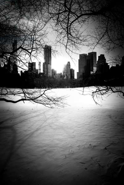 New York City Winter Skyline Nº2