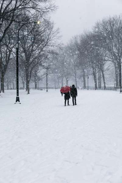 Central Park Winter Lovers