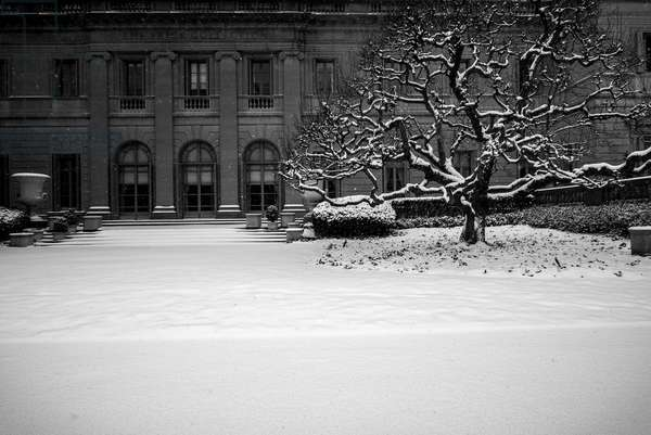 Frick Collection Winter Nº2