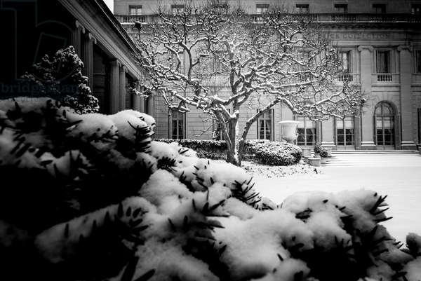 Frick Collection Winter Nº3