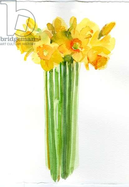 Daffodil bunch, 2014, (watercolor)