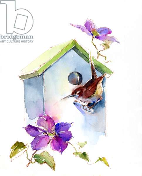 Wren with birdhouse and clematis, 2016, (watercolor)