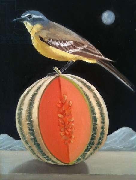 BIRD ON A MELON