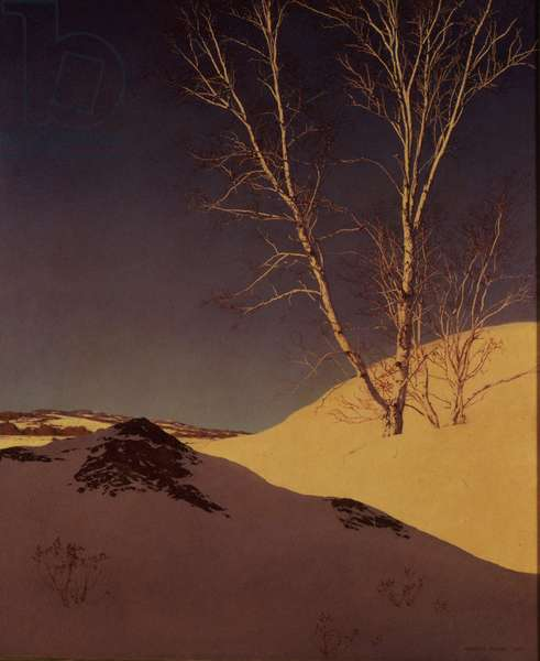 White Birch Winter, 1931 (oil on panel)
