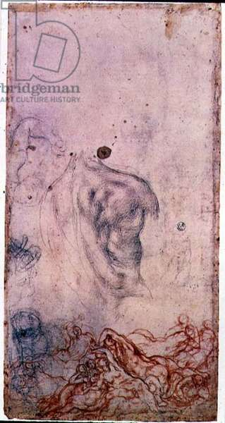 Study for a portrait of Cosimo I Giovinetto with other studies of writhing bodies (black and red chalk on paper)