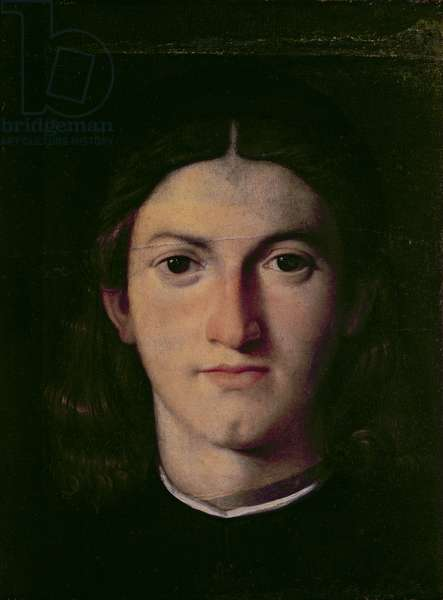 Portrait of a Young Man, 1505 (panel)