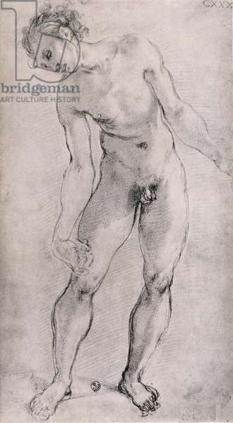 Study of a male figure for the 'Deposition' altarpiece in the Capella Capponi, Santa Felicita, Florence, 1525-27 (charcoal)