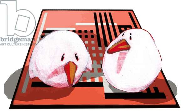 two birds on Albers rug