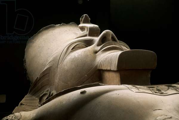 Head of a colossal statue of Ramesses II, from the Great Temple of Ptah of Mit Rahina, New Kingdom (granite)