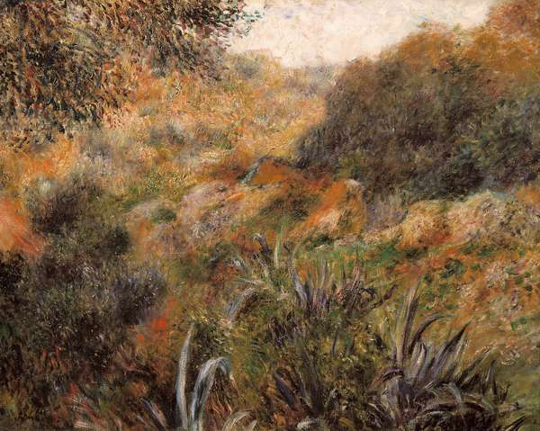 Algerian landscape, the ravine of the wild woman, 1881 (oil on canvas)