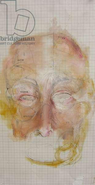 Mask of Skin, 2007, (oil, pencil, on graph paper)