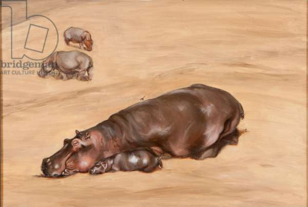 Hippo and calf, 2012, (oil on canvas)