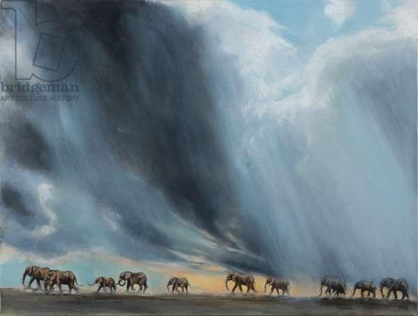 Elephants in the savannah, 2016, oil on canvas
