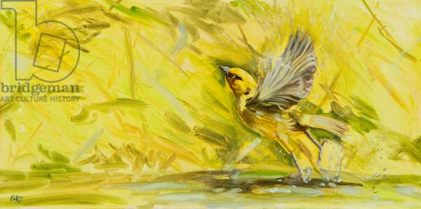 Take Off, 2014, (oil on canvas)