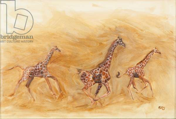 Giraffe running, 2013 (oil on canvas)