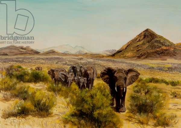 Elephant in Samburu, 2014 (oil on canvas)
