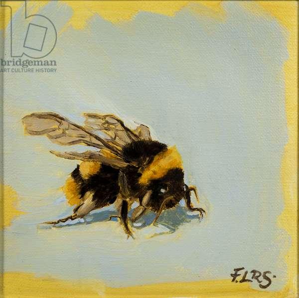 Bee 2, oil on canvas, 2019