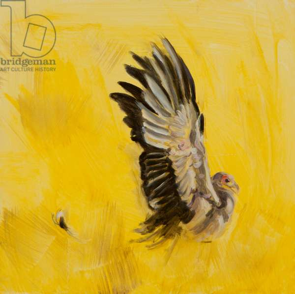 Secretary bird hunting, 2015 (oil on canvas)