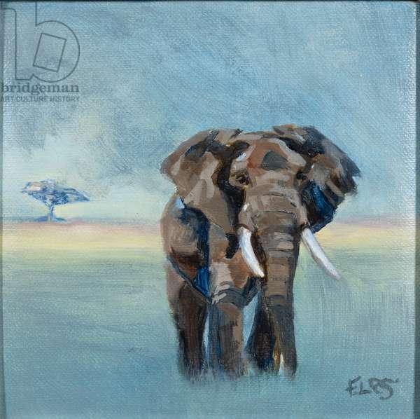 Bull Elephant , 2019, (oil on canvas)