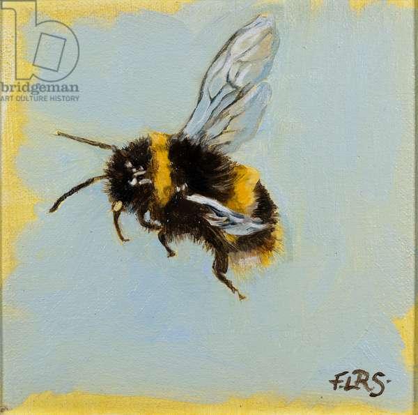 Bee 3, oil on canvas, 2019