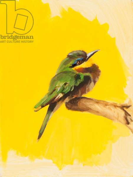 Bee Eater, 2015 (oil on canvas)