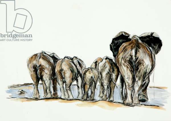 Elephant bottoms, 2013, (mixed media on paper)